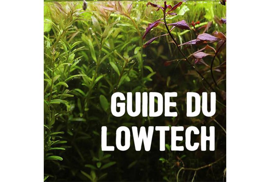 Le guide du lowtech