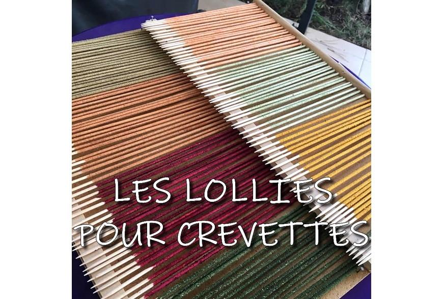 Les produits naturels de décoration pour les aquariums biotopes : attention aux dangers potentiels !