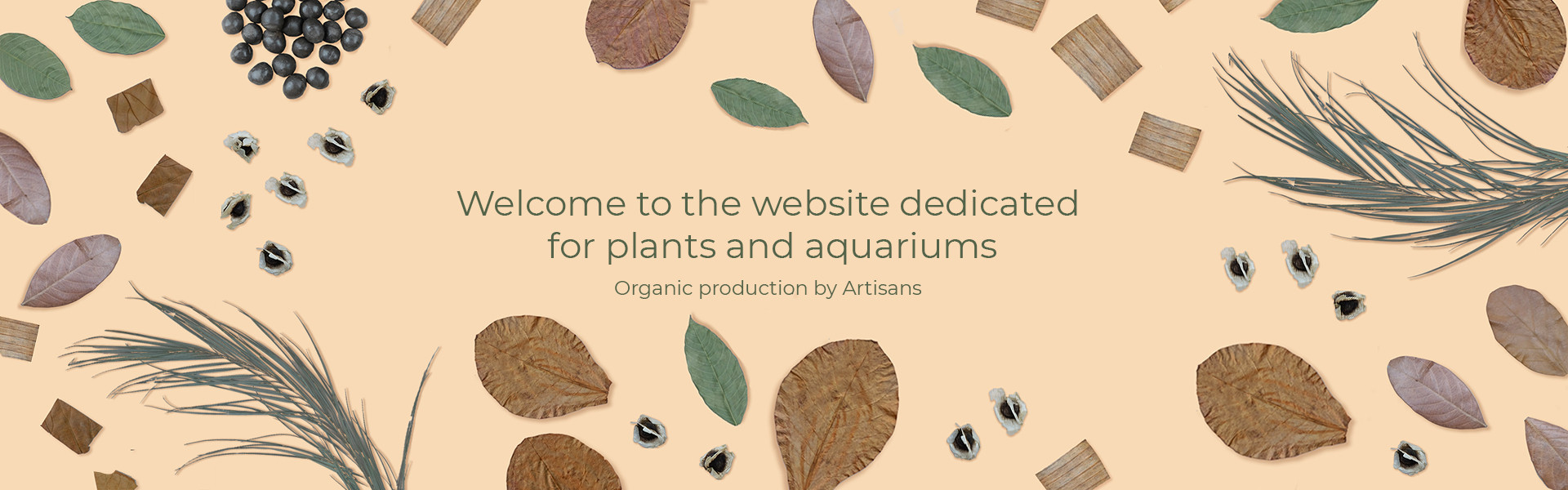 Welcome to the website dedicate for plants and aquariums. Organic productions By Artisans